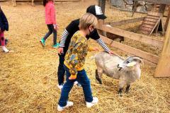 visita-granja-aventura-park-collegi-creanova-2021-010